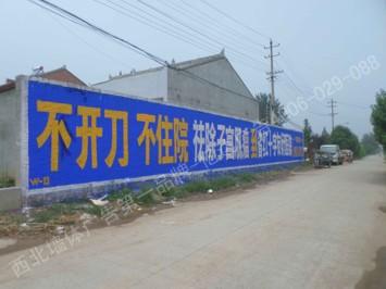 医院,药店,药品类手绘墙体广告
